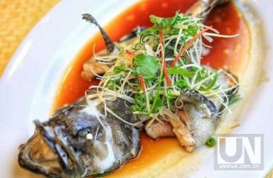 吃鱼真的更聪明!对中国儿童的研究显示:每周吃鱼的智商更高