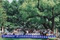 """浙江苏宁八重火力 助阵2018年""""全国消费促进月""""浙江活动"""