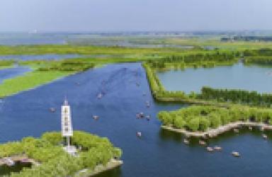 雄安新区生态环境局正式挂牌 白洋淀治理是重中之重