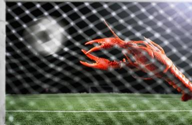 10万中国球迷将赴俄追捧世界杯 10万小龙虾也在路上