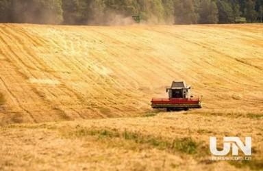 农业农村部:前5月中国进口美国农产品金额下降55.3%