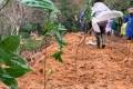 农夫山泉事件进展:施工人员已撤离 正恢复被毁植被