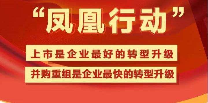 """第二届""""凤凰行动""""论坛暨上市公司马拉松赛即将在嘉兴举行"""